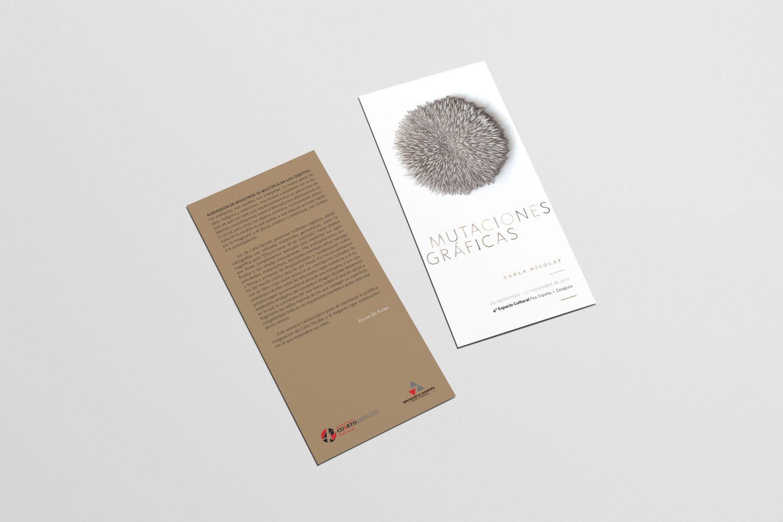 diseno-grafica-expo-carlanicolas-10
