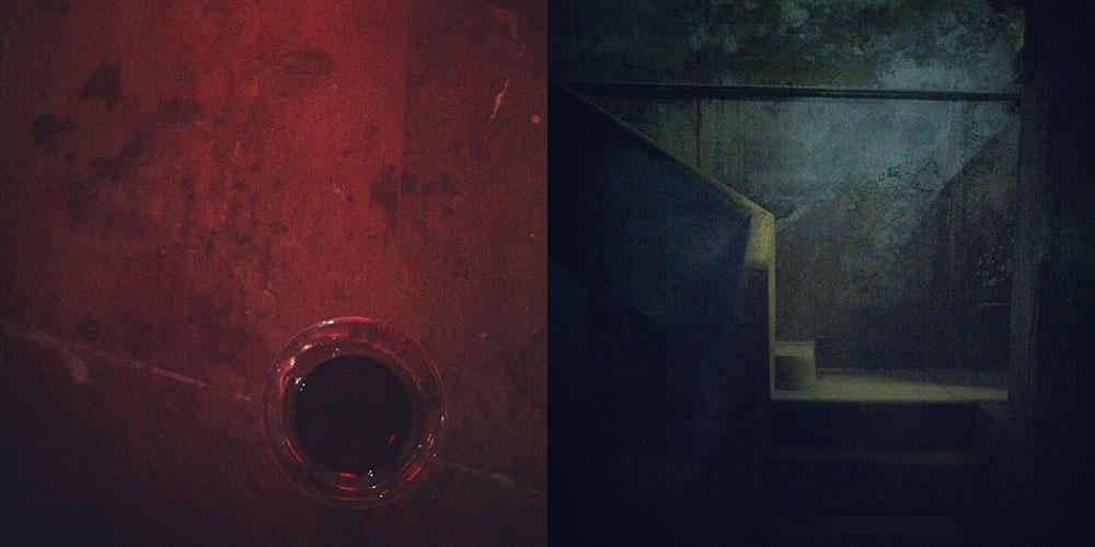 collage_reconstruccion_zorraquino11