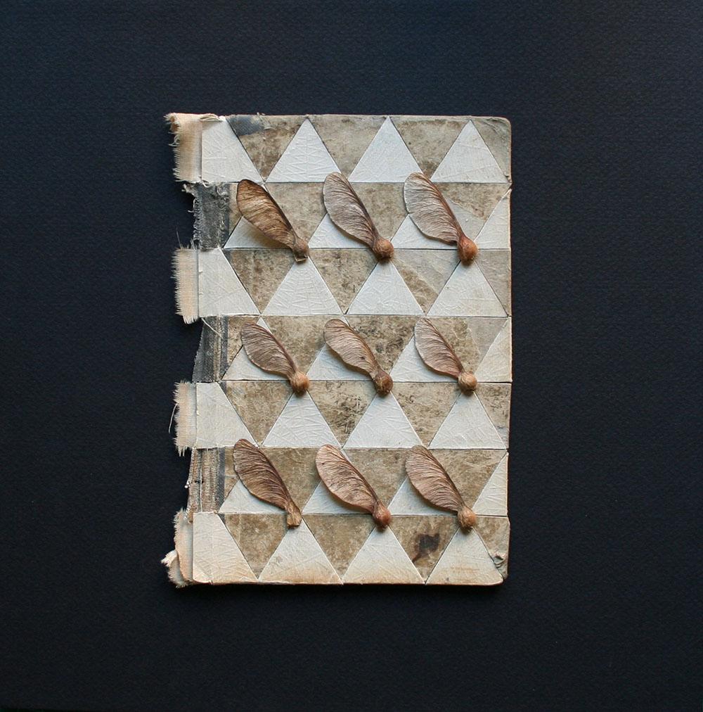 collage_bookcovers_triangulos_semillas1