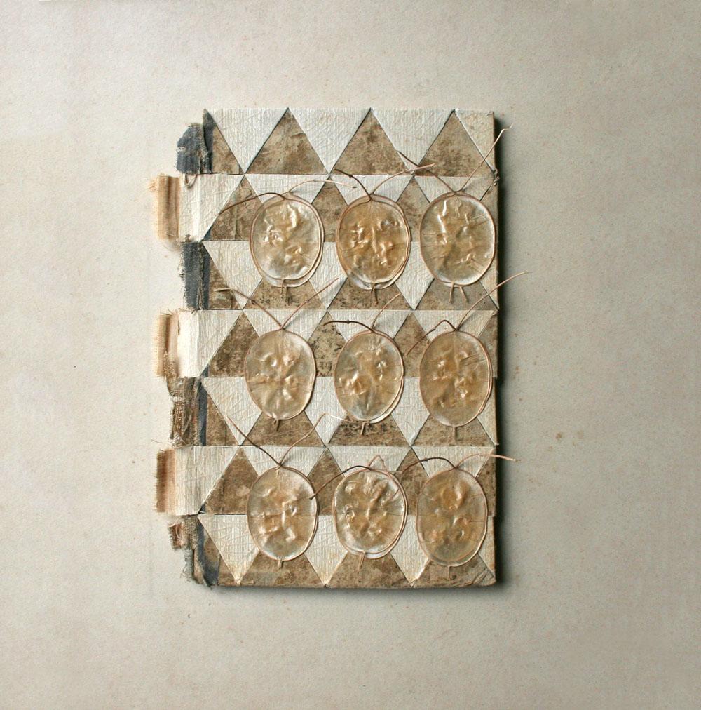 collage_bookcovers_triangulos_semillas2