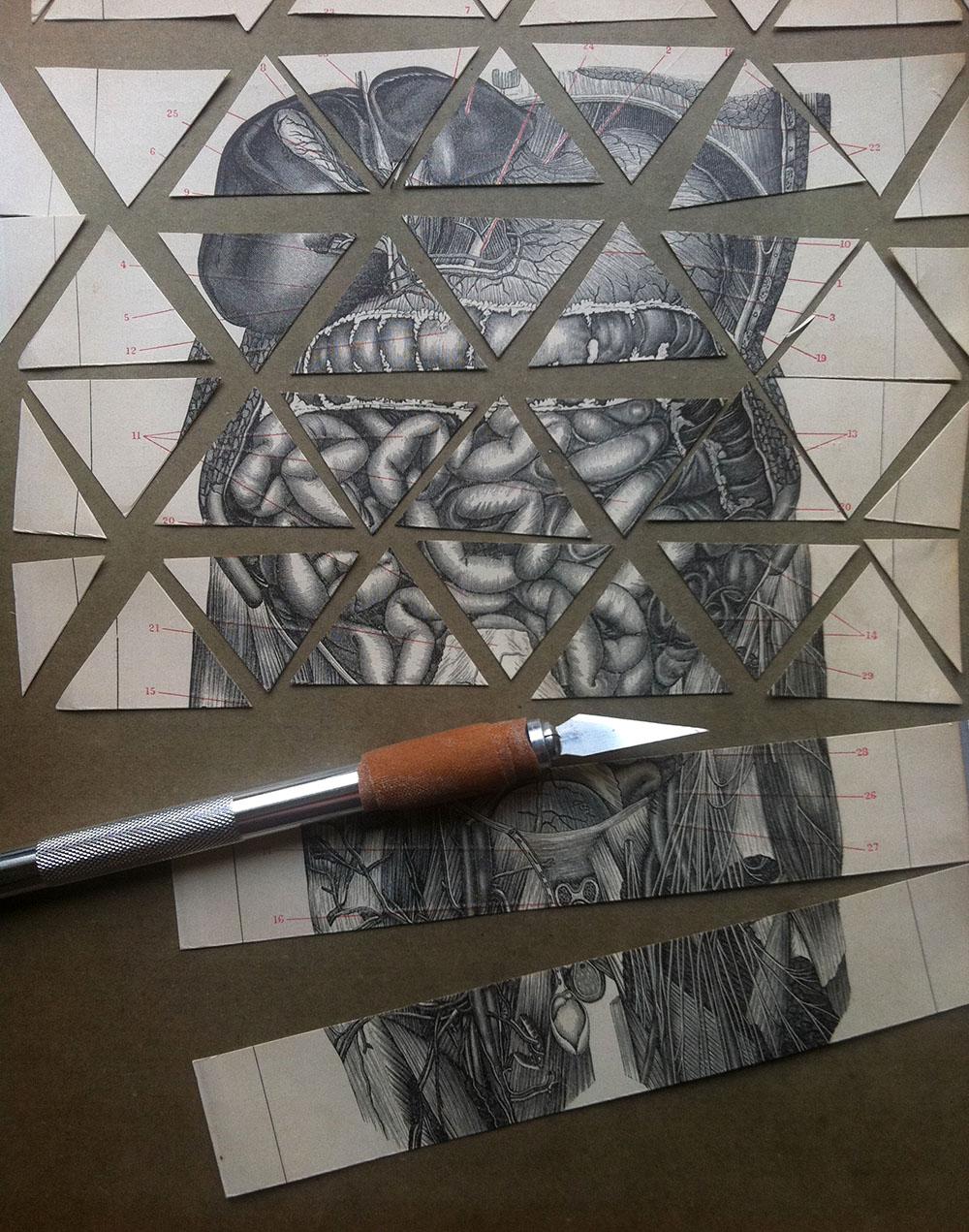 collage_humanbody_triangulos_makingof