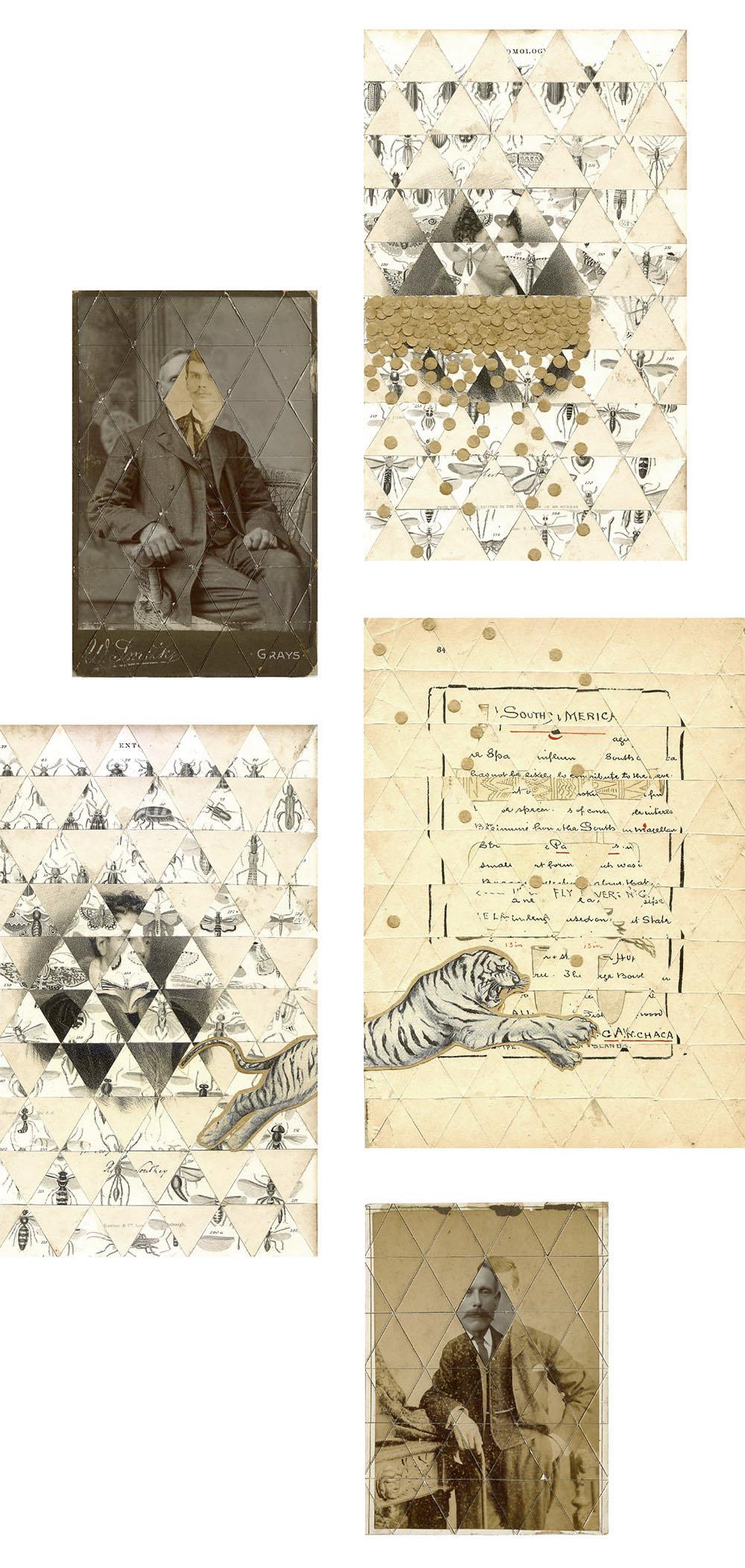 collage_nam_tigre_cadaverexquisito1